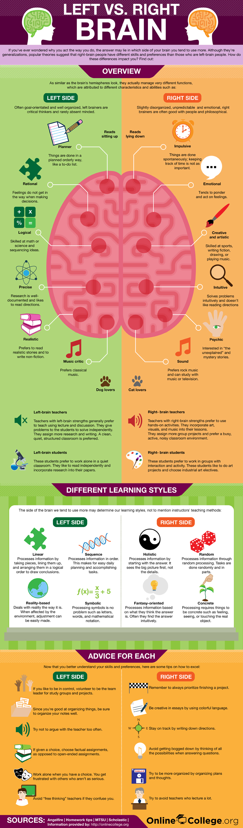 Left and Right Brain Infographic