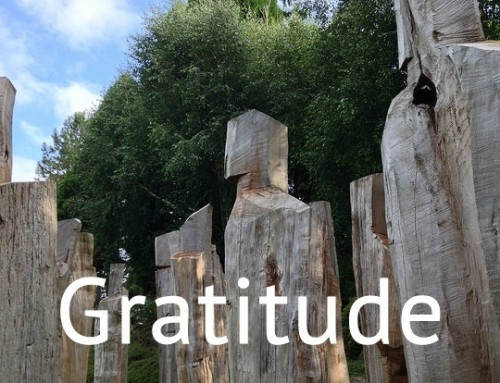 What is the connection between creativity and gratitude?
