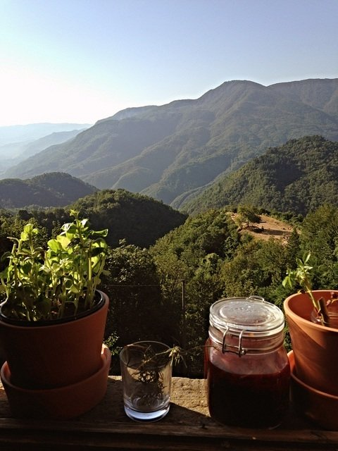 View from Culterra Magica Canalechia Tuscany